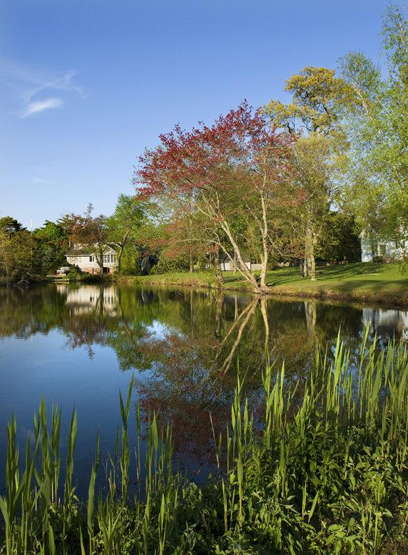 Behmans Pond