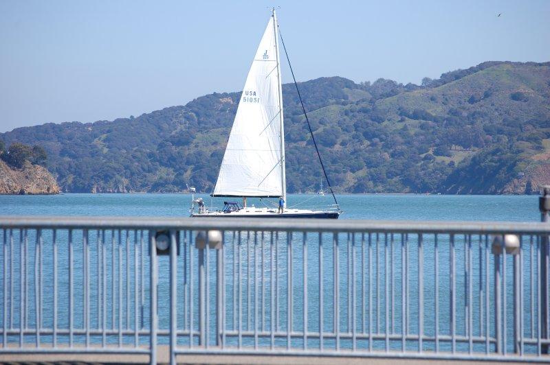 Sailing on the railing, Sausalito