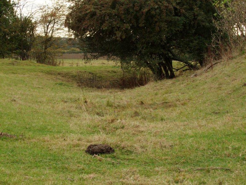 Gt. Wymondley  Castle / 1