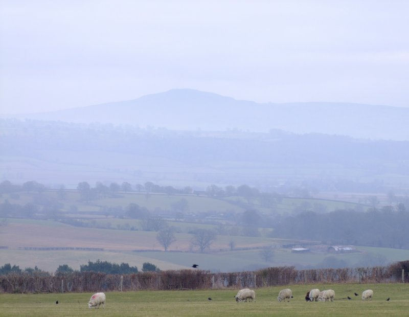 Clee  Hill  in  the  mists.