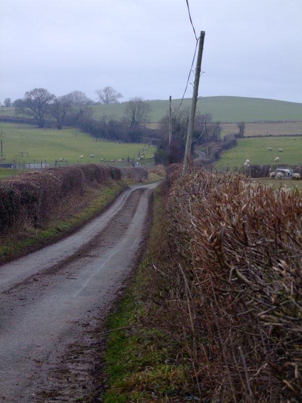 The  road  to  Aldon.