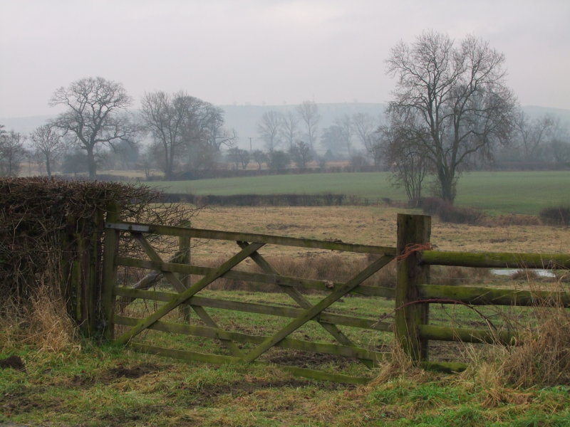 Looking  towards  Lydham, on  a  misty  afternoon.