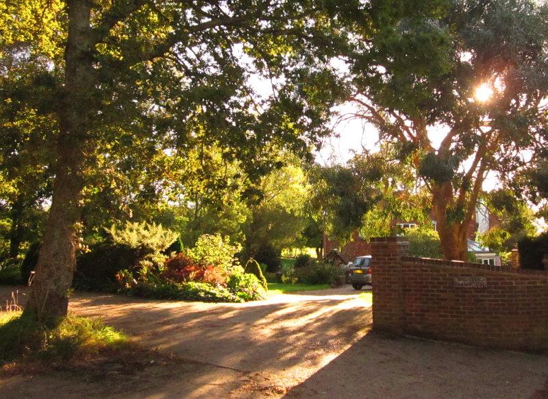 Malvern  Farmhouse, from  the  rear