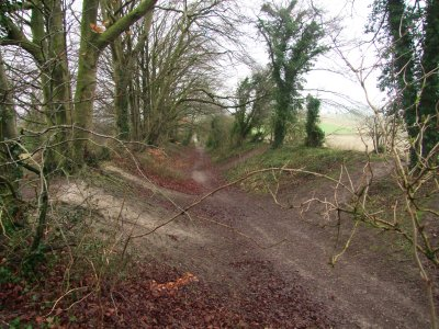 On  Morgans  Hill, on  the  line  of  the  Roman  Road.