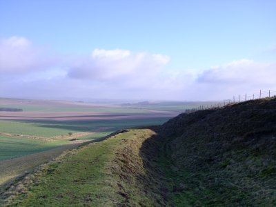 Looking  north  east  from  Wansdyke.