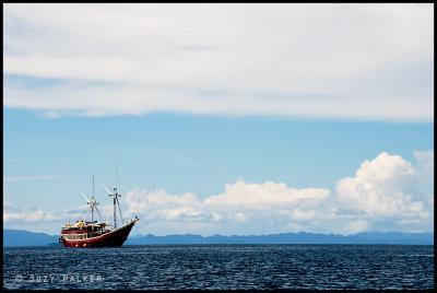Seven Seas on the horizon