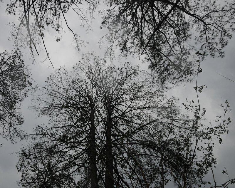 Storm10.jpg