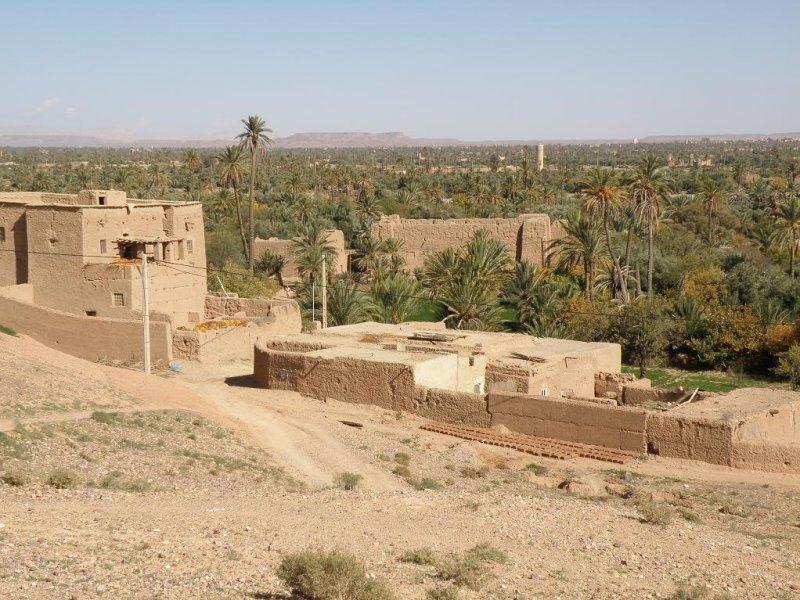 the edge of the Skoura palmeraie, a true oasis