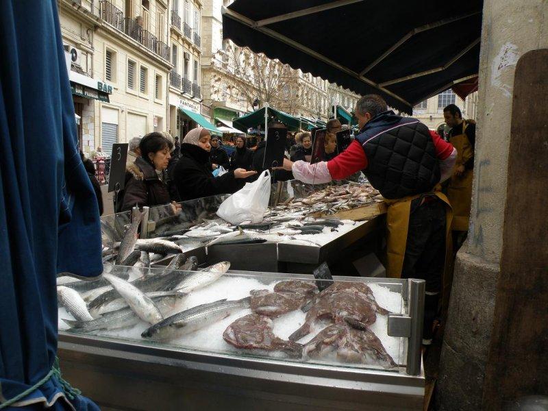 Mediterranean fish...