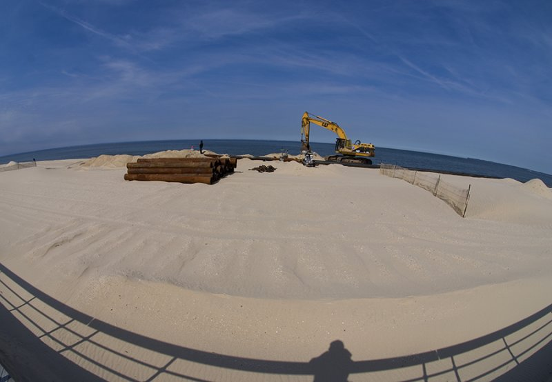 Beach Digging