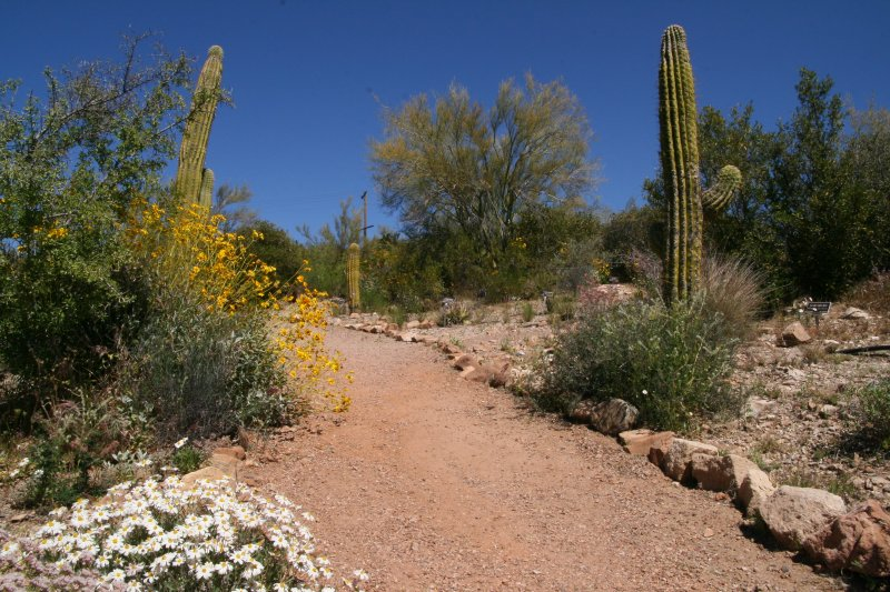 South American Trail