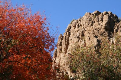 Autumn Leaves and Magma Ridge