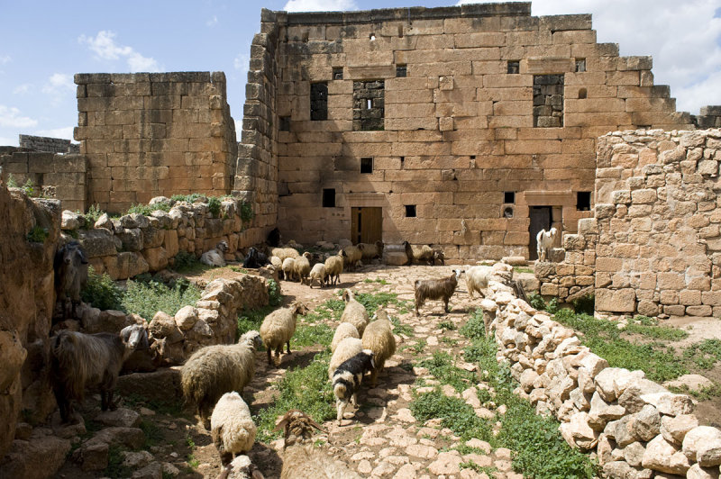 Dead cities from Hama april 2009 8684.jpg