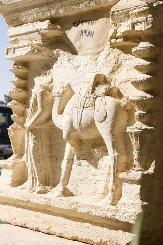 Palmyra apr 2009 9978.jpg
