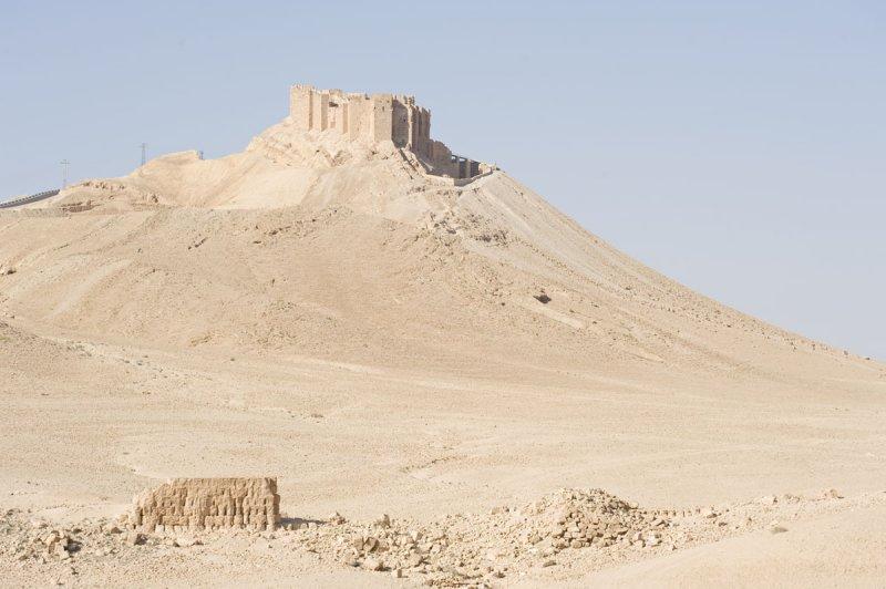 Palmyra apr 2009 0009.jpg