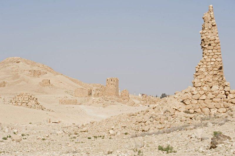 Palmyra apr 2009 0012.jpg