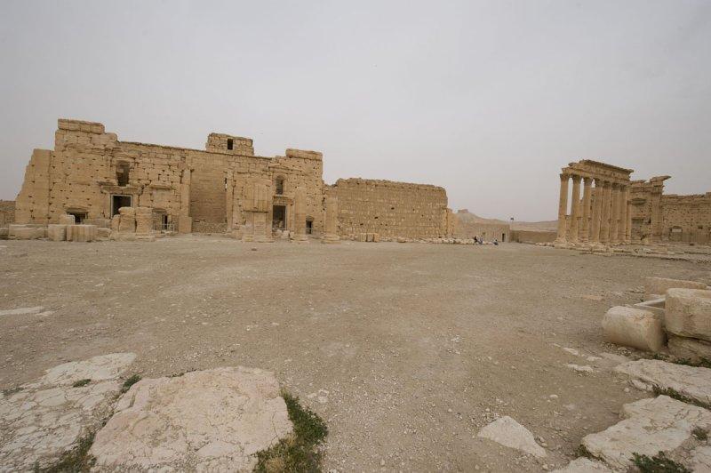Palmyra apr 2009 0201.jpg