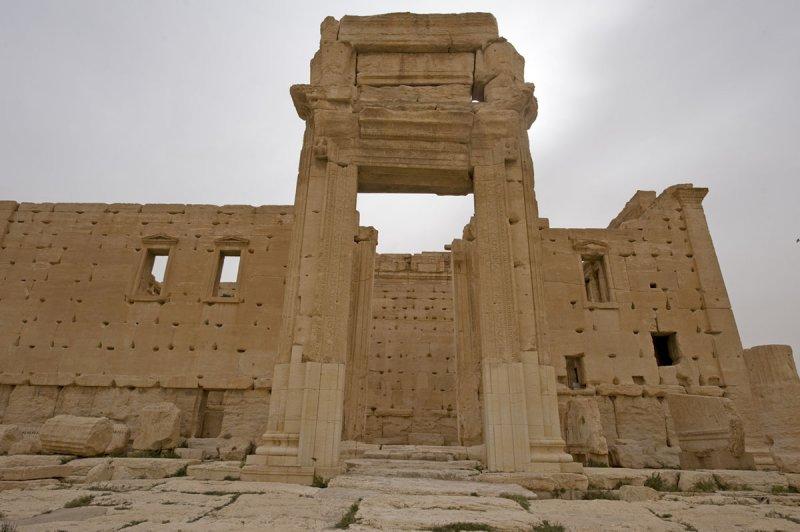 Palmyra apr 2009 0205.jpg
