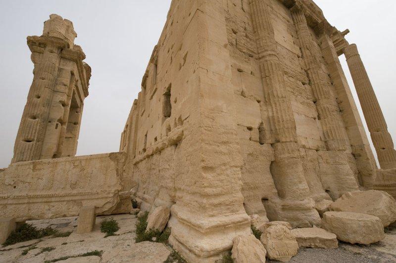 Palmyra apr 2009 0226.jpg