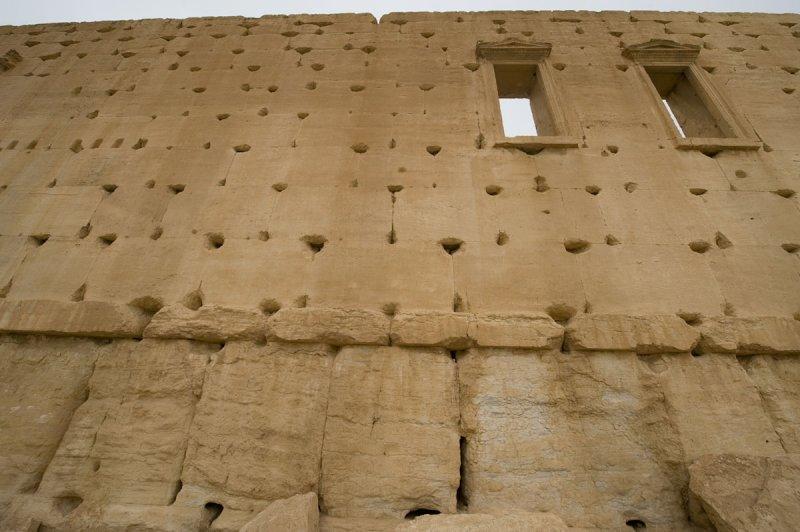 Palmyra apr 2009 0236.jpg