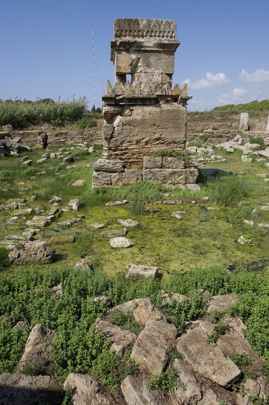 Amrit sept 2009 3348.jpg