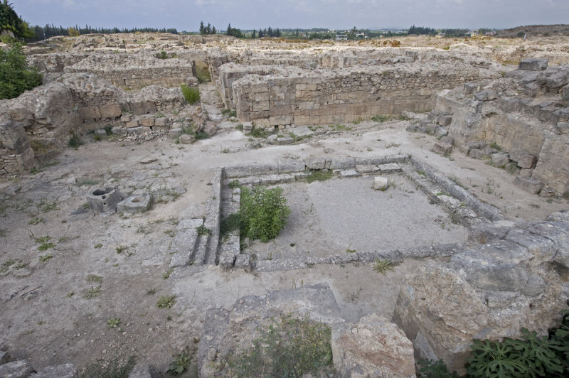 Ugarit sept 2009 3917.jpg