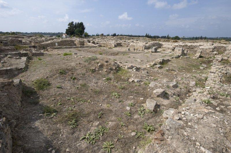Ugarit sept 2009 3924.jpg