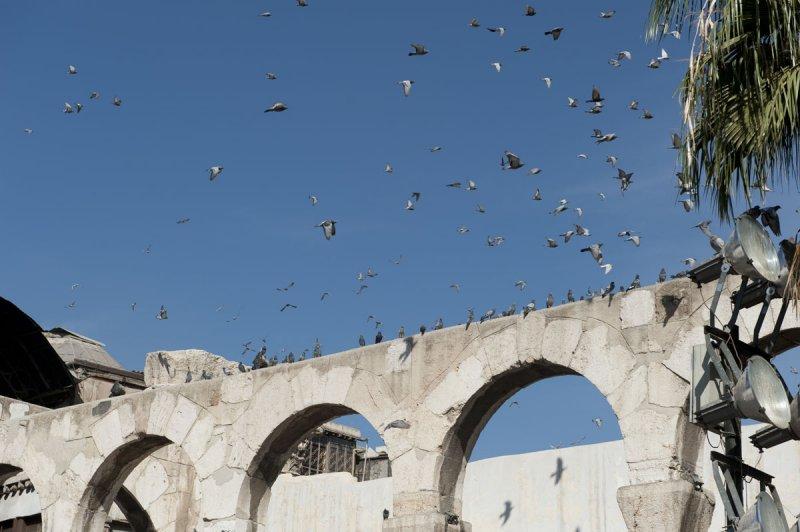 Damascus 2010 1426.jpg