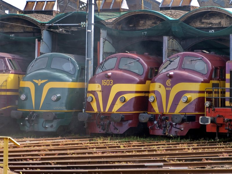 NOHABs - SNCB & CFL in the old roundhouse