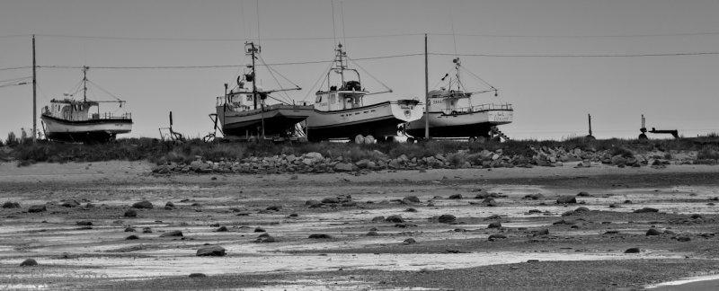 Marée basse_Low tide
