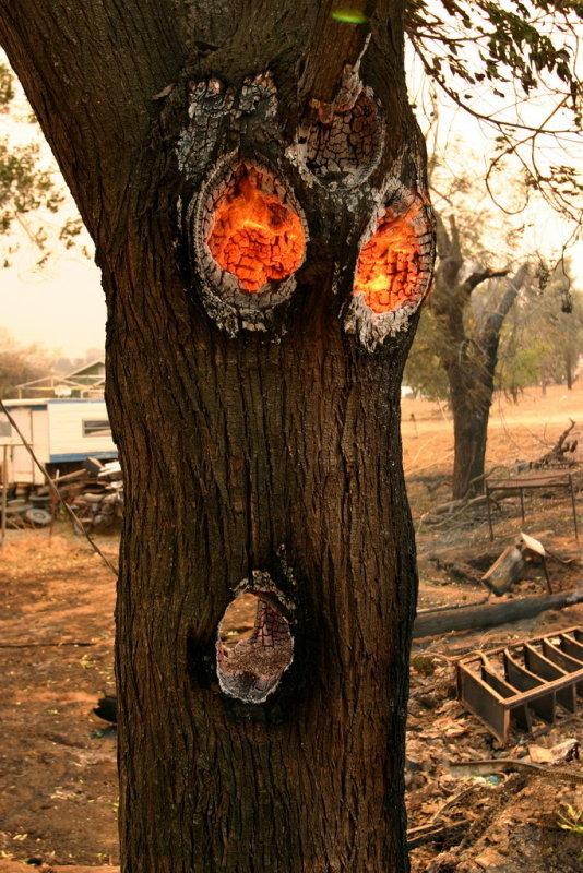 Burning Inside Only