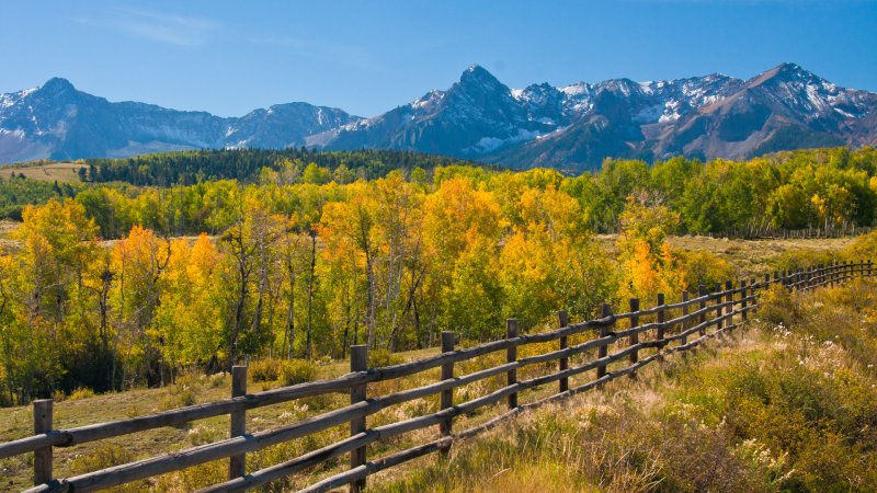 Wood Fence, Aspen and Mountains Outside Telluride