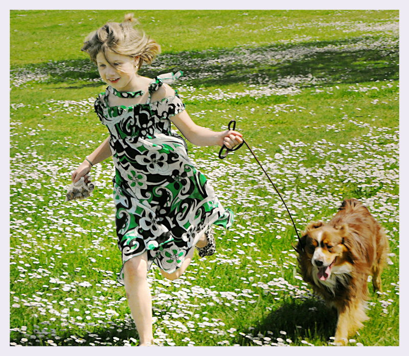 Running through the English Daisys