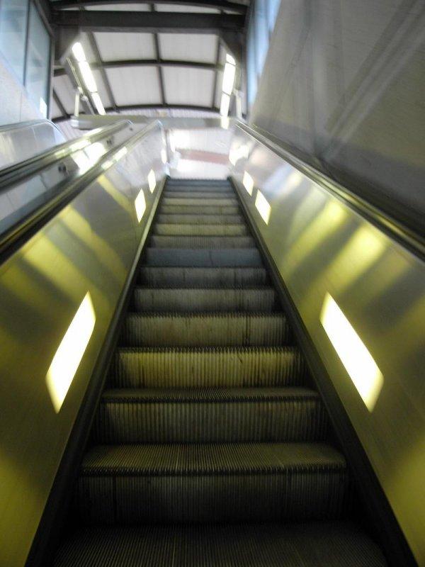 pbase Metro R1012485_2.jpg