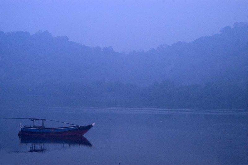 misty morning thane backwater DSC-26470.jpg