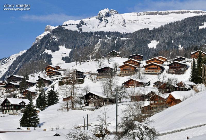 Grindelwald1h.jpg