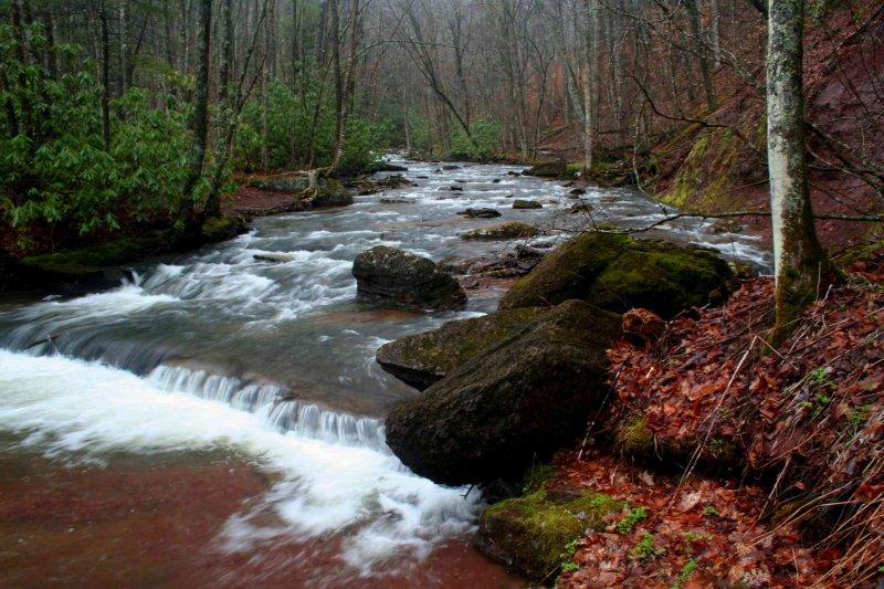 Hills Creek Mid Stream Scene tb0409ccr.jpg