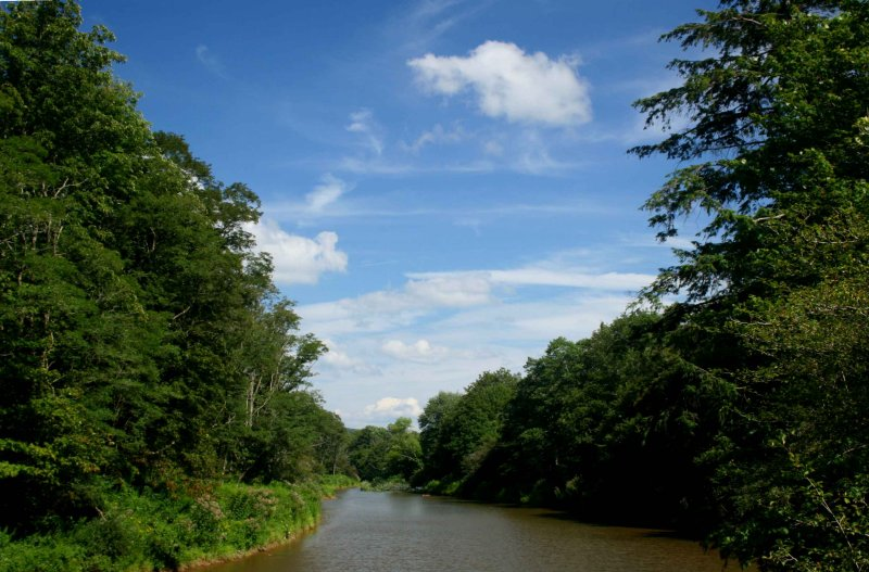 Cloudy Sky over Wooded Williams River tb0810wir.jpg