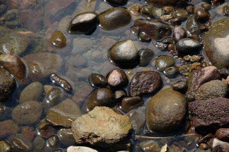 Huia stream stones 0423r.jpg