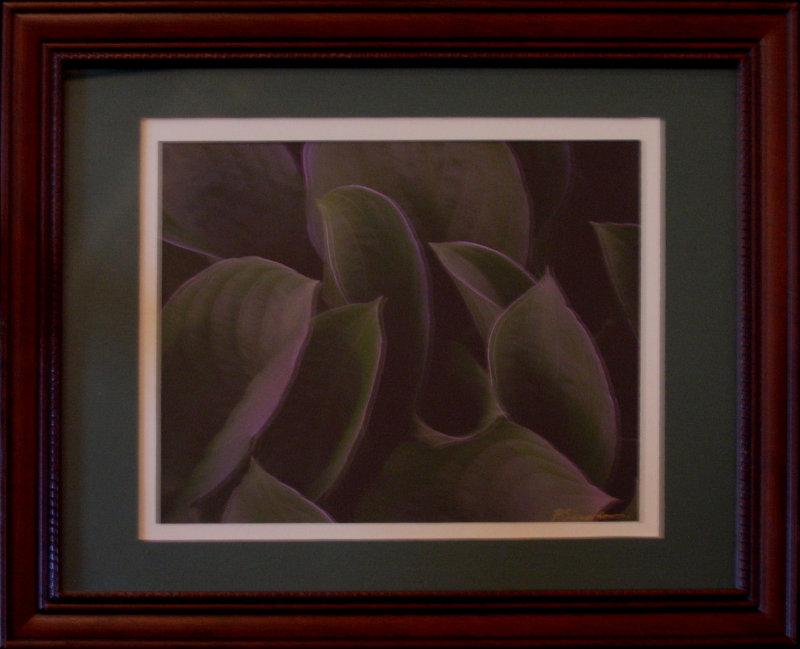 Metallic Hosta 6I Seroka Sale 65 Rent 5 11x15 Photograph.jpg