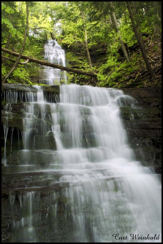 Chimney Hollow Falls