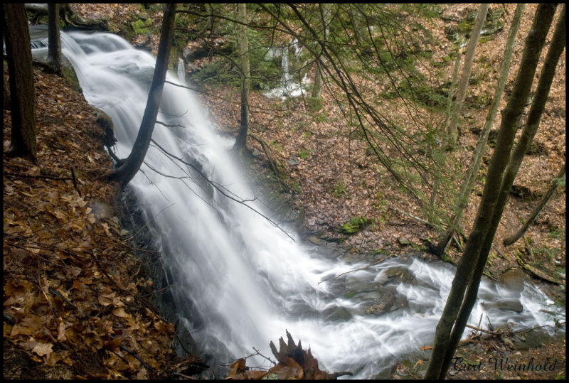 Jerry Run Falls