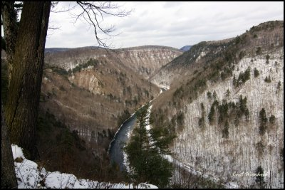 from Colton Point to Bear Run