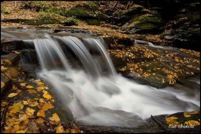 Autumn along Pine Island Run