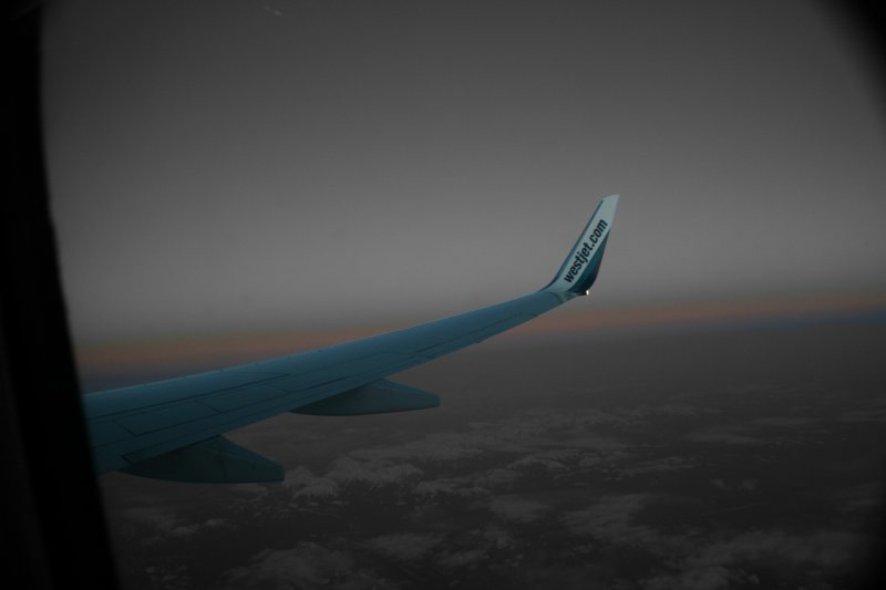 Winging into the sunset