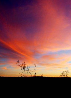 Desert Sunset Goes On