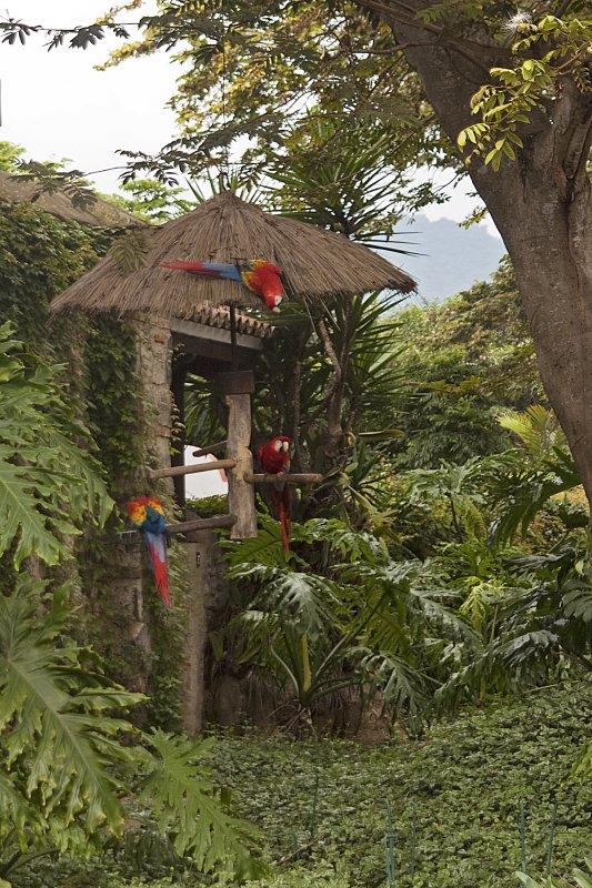 Guatemala-0406.jpg