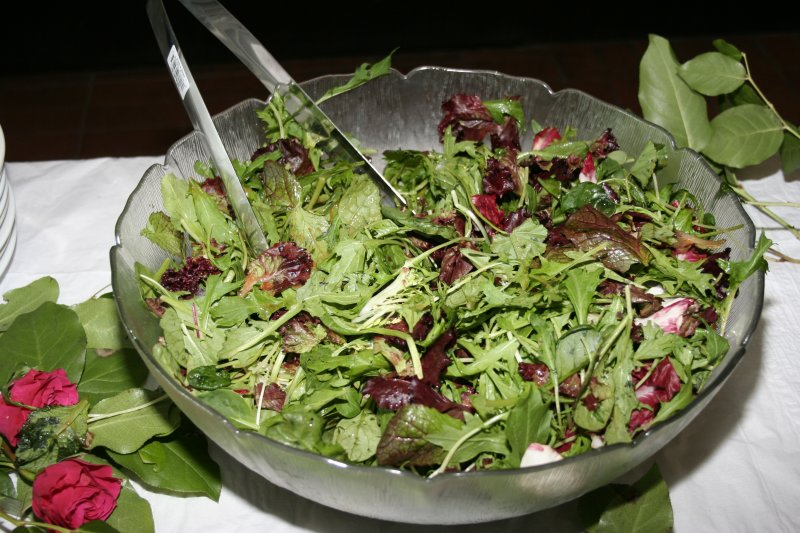 SALAD ALL EVENTS PHOTOGRAPHY & VIDEO PRODUCTIONS