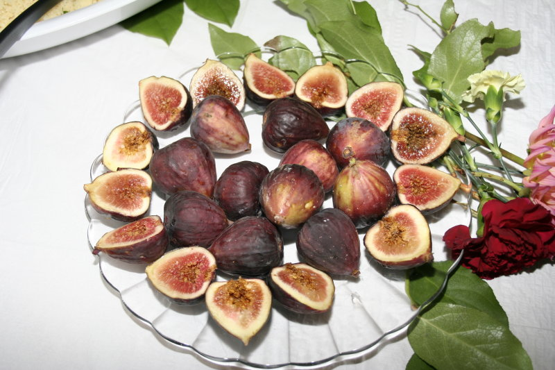 FIGS ALL EVENTS PHOTOGRAPHY & VIDEO PRODUCTIONS