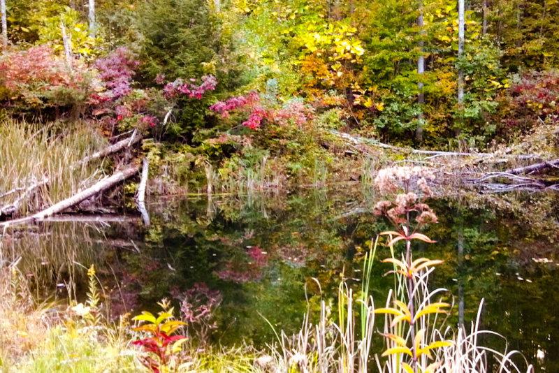 2012-10-05_18-44-12_675.jpg